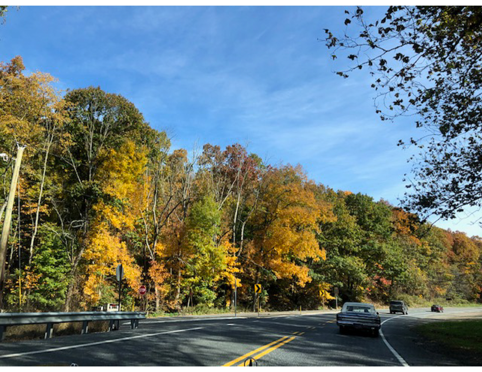 Fall-Foliage-B-05