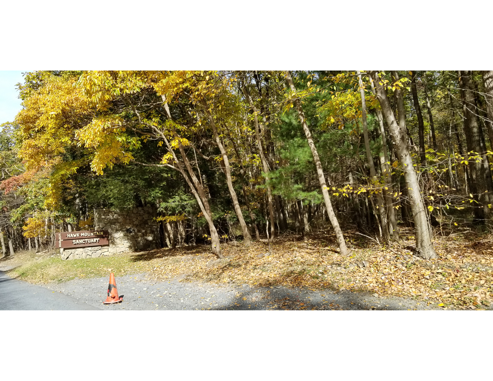 Fall-Foliage-Tour-16