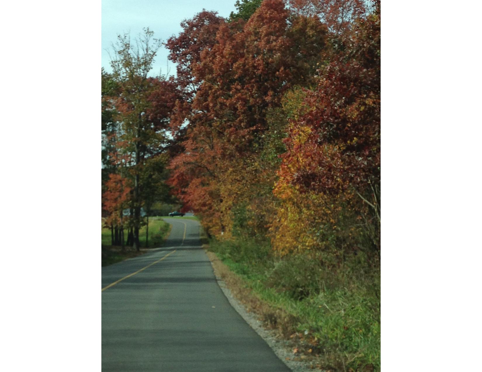 Fall Foliage Tour 3-02