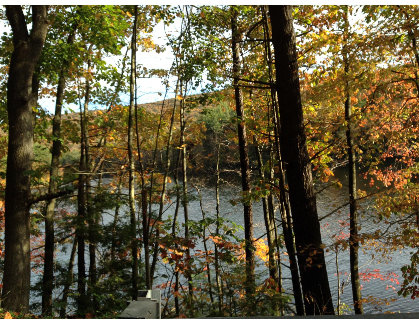 Fall Foliage Tour 3-06